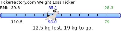 https://tickers.TickerFactory.com/ezt/t/wVPeO6B/weight.png