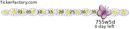 http://tickers.TickerFactory.com/ezt/d/1;10053;95/st/20091114/dt/6/k/bdb5/preg.png