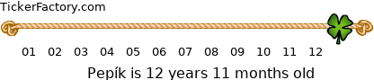 http://tickers.TickerFactory.com/ezt/d/2;10300;122/st/20090730/n/Pep%EDk/k/4918/age.png
