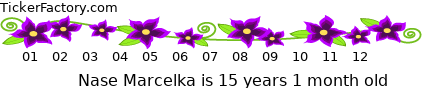 http://tickers.TickerFactory.com/ezt/d/2;10704;104/st/20070523/n/Nase+Marcelka/k/92ba/age.png