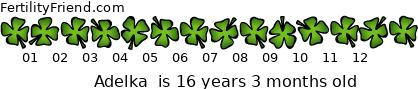 http://tickers.TickerFactory.com/ezt/d/2;10721;104/st/20070423/n/Adelka+/dt/7/k/ee8e/age.png