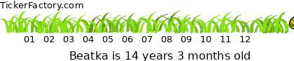 http://tickers.TickerFactory.com/ezt/d/2;10722;126/st/20090427/n/Beatka/dt/6/k/9888/age.png