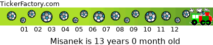 http://tickers.TickerFactory.com/ezt/d/2;10758;107/st/20090630/n/Misanek/k/55d8/age.png