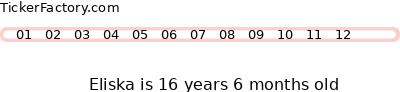 http://tickers.TickerFactory.com/ezt/d/2;40;30/st/20070122/n/Eliska/k/8525/age.png