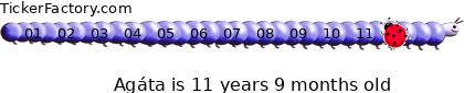 http://tickers.TickerFactory.com/ezt/d/2;50;104/st/20111026/n/Ag%E1ta/k/8669/age.png