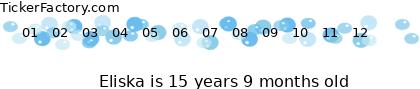 http://tickers.TickerFactory.com/ezt/d/2;51;104/st/20071018/n/Eliska/dt/5/k/e3d9/age.png