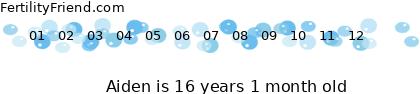 http://tickers.TickerFactory.com/ezt/d/2;51;17/st/20070625/n/Aiden/dt/5/k/9a91/age.png