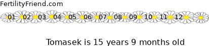 http://tickers.TickerFactory.com/ezt/d/2;53;28/st/20071023/n/Tomasek/dt/5/k/ac22/age.png