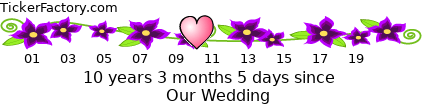 http://tickers.TickerFactory.com/ezt/d/4;10704;116/st/20120428/e/Our+Wedding/k/827b/event.png