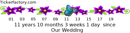 http://tickers.TickerFactory.com/ezt/d/4;10704;88/st/20100828/e/Our+Wedding/dt/5/k/6b04/event.png