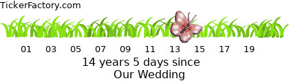 http://tickers.TickerFactory.com/ezt/d/4;10722;93/st/20080719/e/Our+Wedding/dt/-6/k/84a5/event.png