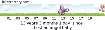 http://tickers.TickerFactory.com/ezt/d/4;10766;96/st/20090420/e/Lost+an+angel+baby/k/fc28/event.png