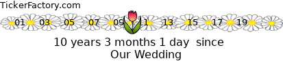 http://tickers.TickerFactory.com/ezt/d/4;53;120/st/20120504/e/Our+Wedding/dt/12/k/5335/event.png