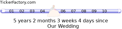 http://tickers.TickerFactory.com/ezt/d/4;8;484/st/20170427/e/Our+Wedding/dt/5/k/30d9/event.png